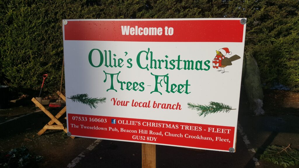 Ollie's Christmas Trees in Fleet Hampshire